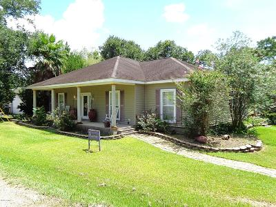Jeanerette Single Family Home For Sale: 10712 Old Jeanerette Road