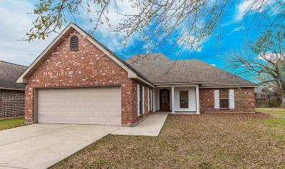 Youngsville Single Family Home For Sale: 609 Beacon Drive
