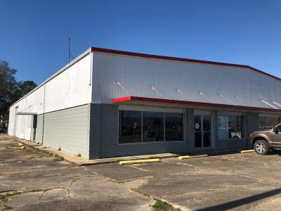 Vermilion Parish Commercial For Sale: 902 N John M Hardy Drive