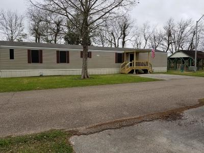 Duson Single Family Home For Sale: 228 Country Breeze Lane