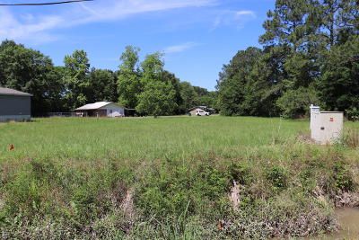 Residential Lots & Land For Sale: Tbd Pershing Hwy