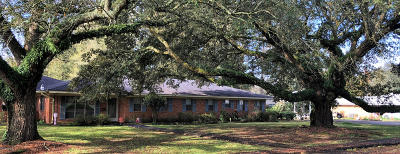 Jeanerette Single Family Home For Sale: 3009 Dalbor Street