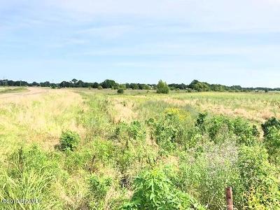 New Iberia Farm For Sale: Tbd Emile Verett Road
