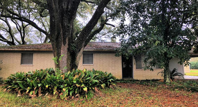 Opelousas Single Family Home For Sale: 244 Wisteria Drive