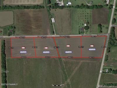 Farm For Sale: Lot 3 Ti-Adam Guidry Road