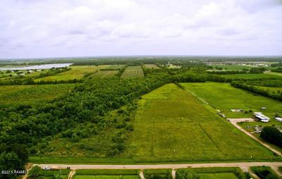 Duson LA Farm For Sale: $115,000