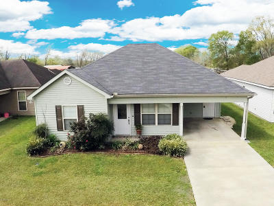 Sunset Single Family Home For Sale: 135 Summerset Lane