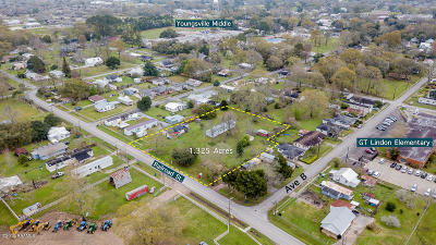 Youngsville Single Family Home For Sale: 205 Railroad Street
