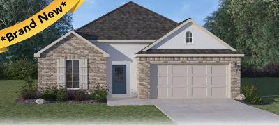 Verot Park Single Family Home For Sale: 210 Amaya Avenue