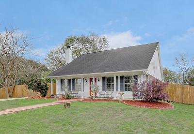Shady Pines Single Family Home For Sale: 134 Kirkwood Lane