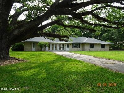 Breaux Bridge Single Family Home For Sale: 4439 S Main Street