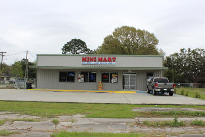 Iberia Parish Commercial For Sale: 722 W Admiral Doyle Drive