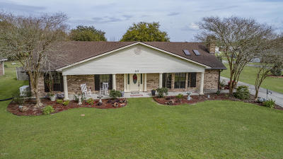 New Iberia Single Family Home For Sale: 317 Willow Wood Drive