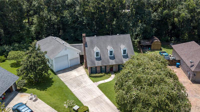Carencro Single Family Home For Sale: 115 Bunker Hill Drive