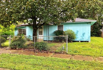 St. Martinville Single Family Home For Sale: 440 S Vivier Drive