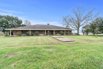 Mamou Single Family Home For Sale: 1712 Poinciana Avenue