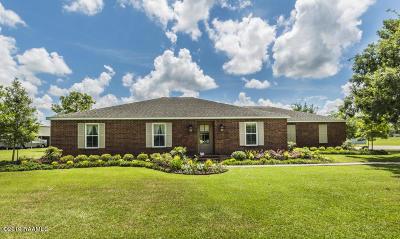 Arnaudville Single Family Home For Sale: 194 Henderson Drive