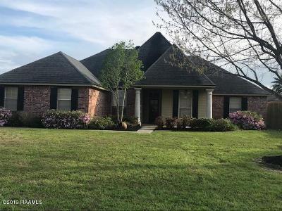 Single Family Home For Sale: 117 Gaslight Lane