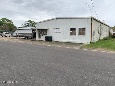 St Landry Parish Commercial For Sale: 140 S 9th Street
