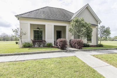 Carencro Single Family Home For Sale: 115 Wateredge Circle