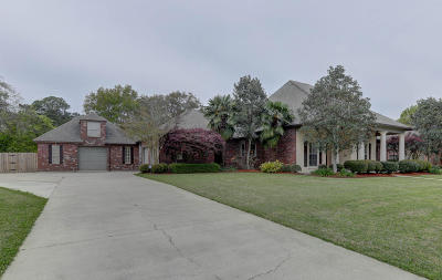 Youngsville Single Family Home For Sale: 132 Acres Drive
