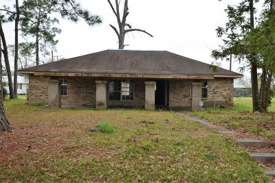 Opelousas Single Family Home For Sale: 507 Sapphire Street