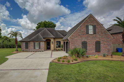 Single Family Home For Sale: 105 Isaiah Drive