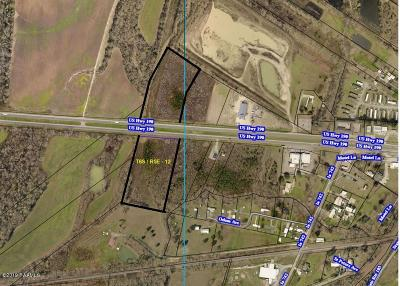 Port Barre Residential Lots & Land For Sale: Highway 190