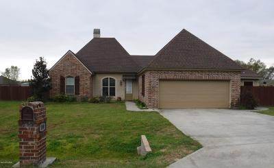 Single Family Home For Sale: 100 Pontchartrain Drive