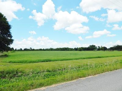 Acadia Parish Residential Lots & Land For Sale: 1002 Tanner Road
