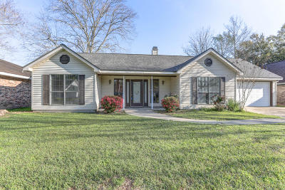 Single Family Home For Sale: 115 Village Green Drive