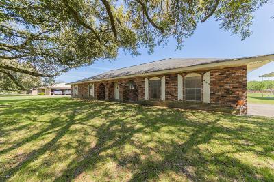 Lafayette  Single Family Home For Sale: 443 Failla Road