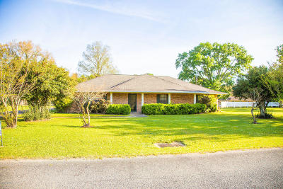 Ville Platte Single Family Home For Sale: 301 Perrodin Street