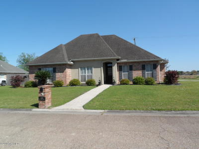 New Iberia Single Family Home For Sale: 2500 Coco Palm Drive