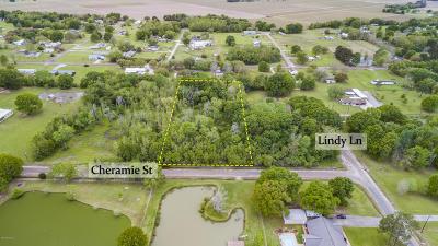 Iberia Parish Residential Lots & Land For Sale: Lot 23-C Cheramie Street