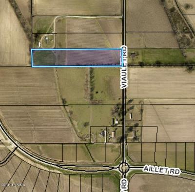 Youngsville Farm For Sale: 240 Viaulet Road