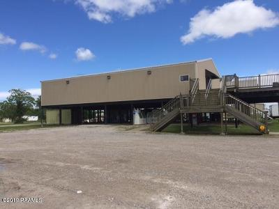 Vermilion Parish Commercial For Sale: 25191 La- 333