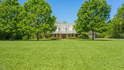 Carencro Single Family Home For Sale: 441 Martin Prejean Road