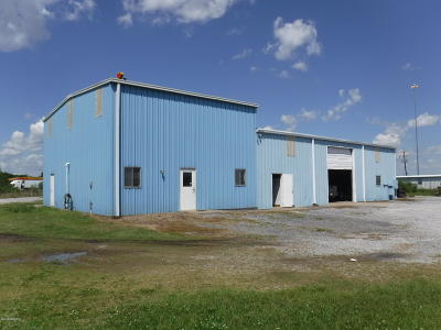 Acadia Parish Commercial For Sale: 202 Lexington Drive
