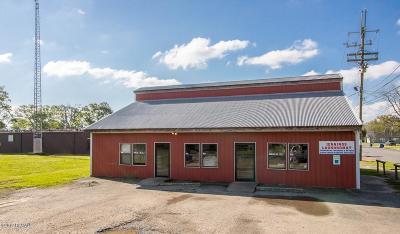 Jefferson Davis Parish Commercial For Sale: 415 W Division Street