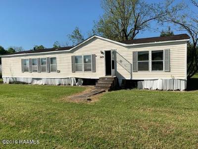 Breaux Bridge Single Family Home For Sale: 1009 Pecanwood Drive