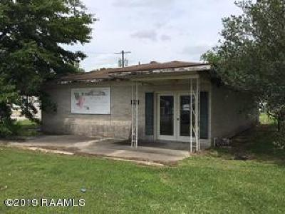 St Martin Parish Commercial For Sale: 1393 Henderson Hwy