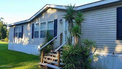 Opelousas Single Family Home For Sale: 1924 Cummings Street