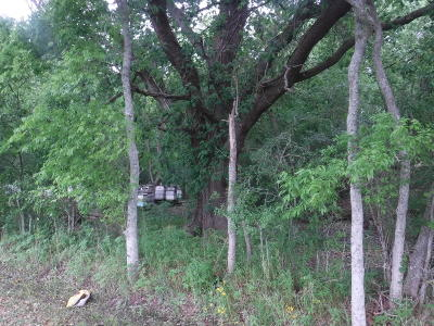 Acadia Parish Residential Lots & Land For Sale: 1339 Lourdes Road