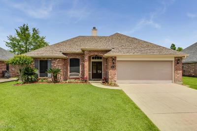 Single Family Home For Sale: 206 Doe Lane