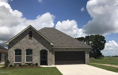 Single Family Home For Sale: 207 Berg Court
