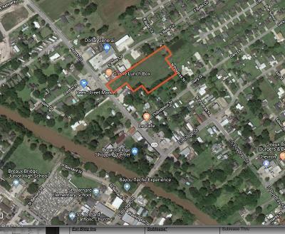 Breaux Bridge Residential Lots & Land For Sale: 200 Rees Street