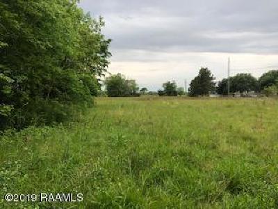 Vermilion Parish Residential Lots & Land For Sale: 12211 Veterans Memorial Drive
