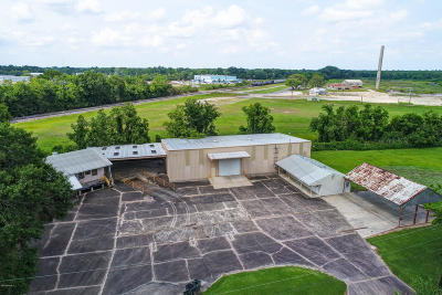 Commercial For Sale: 319 Camelia Street
