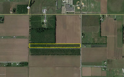 Farm For Sale: Tbd Claude Road